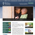 Website Design, Mission of TEARS